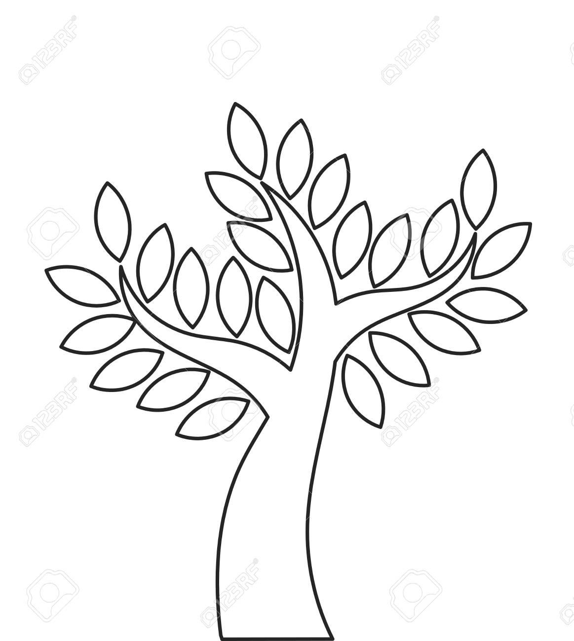 transparent tree outline shape vector illustration royalty free