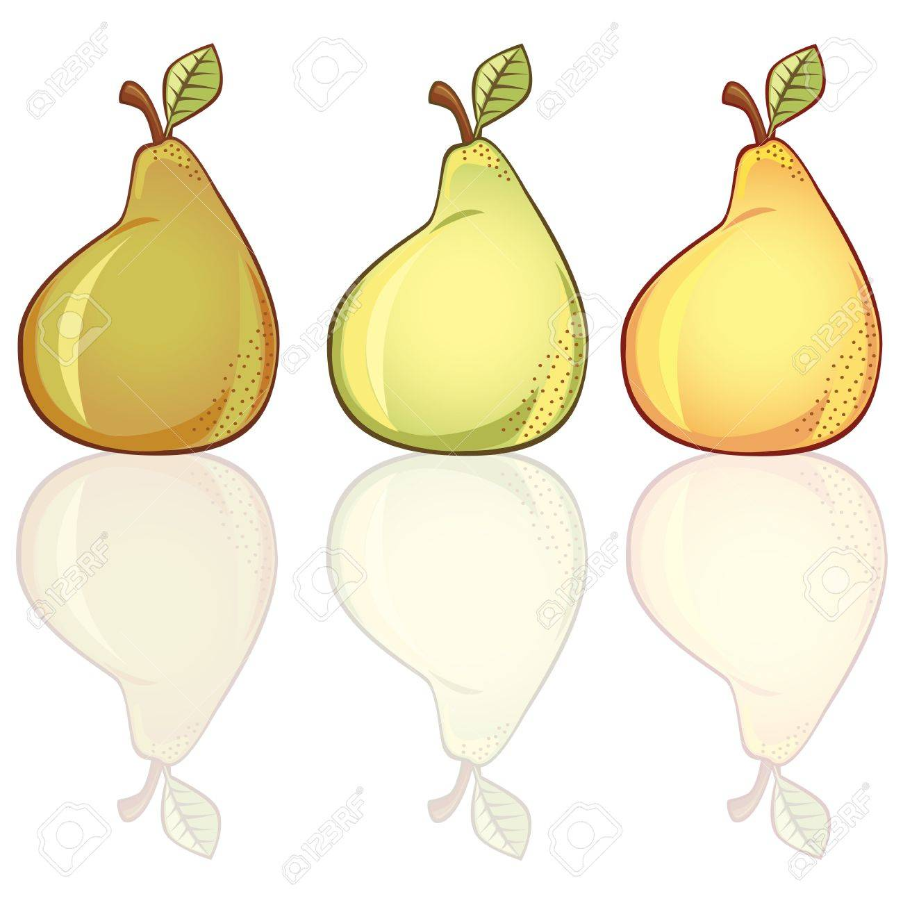 3 fresh pears in different colors,  Shadows contains transparency Stock Vector - 16062302