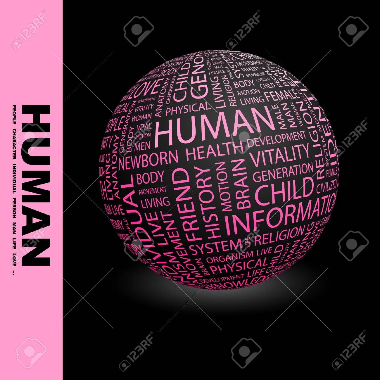 HUMAN. Globe with different association terms. Wordcloud vector illustration. Stock Vector - 9129339