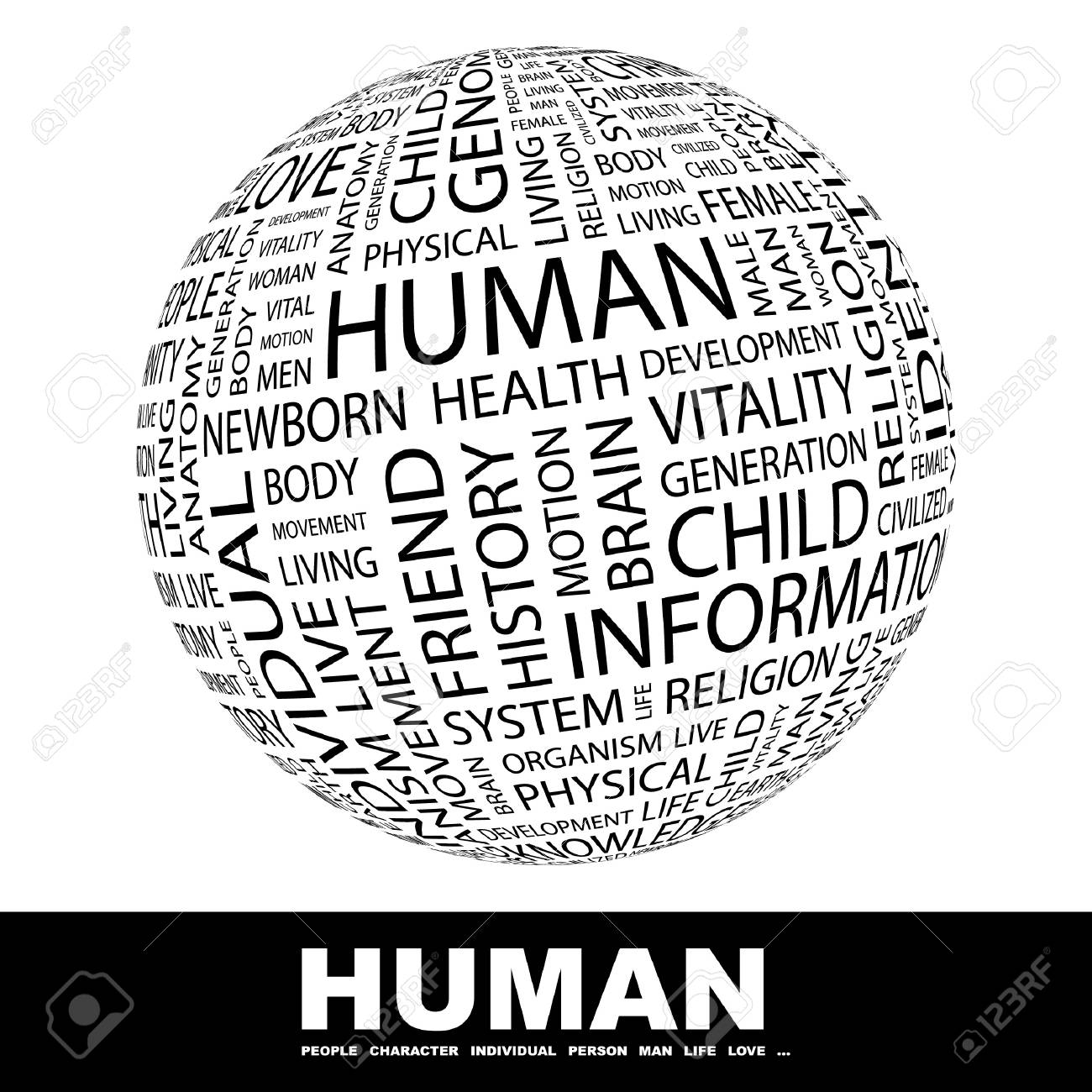 HUMAN. Globe with different association terms. Wordcloud vector illustration. Stock Vector - 8840188