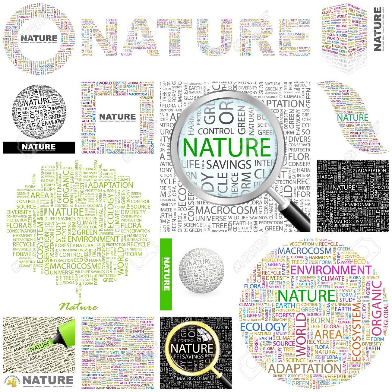 NATURE. Word collage. GREAT COLLECTION. Stock Vector - 11269195