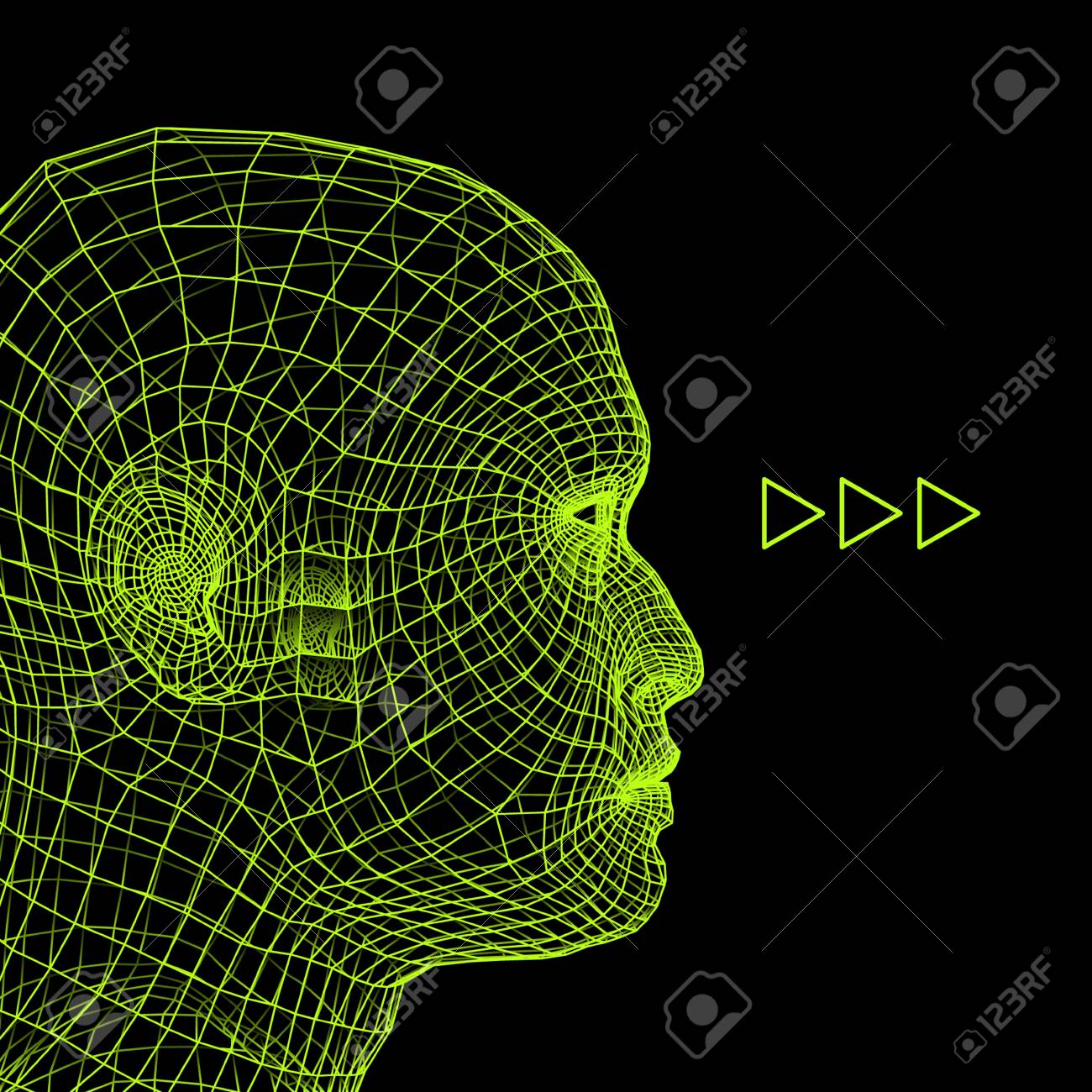 human head wire model  human polygon head  face scanning  view of human  head  3d geometric face design  3d polygonal covering skin