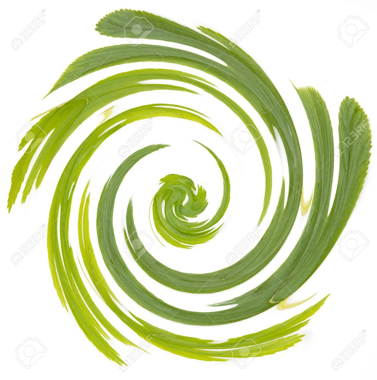 Abstract Sfondo Verde E Bianco