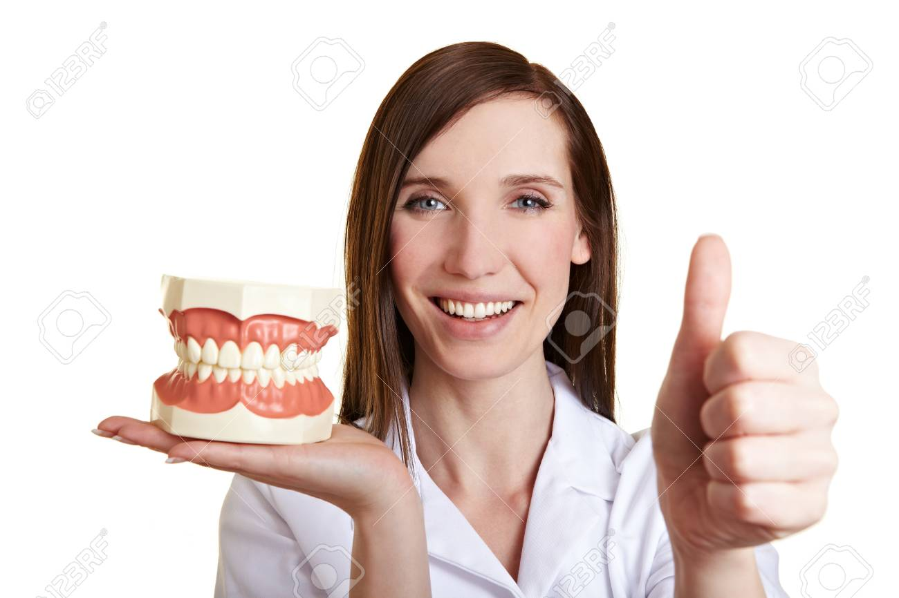 Smiling female dentist with teeth model holding her thumb up Stock Photo - 9513630