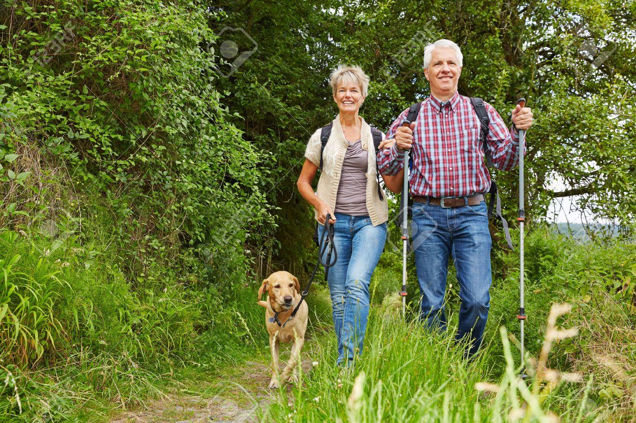 Скандинавская ходьба - польза или вред