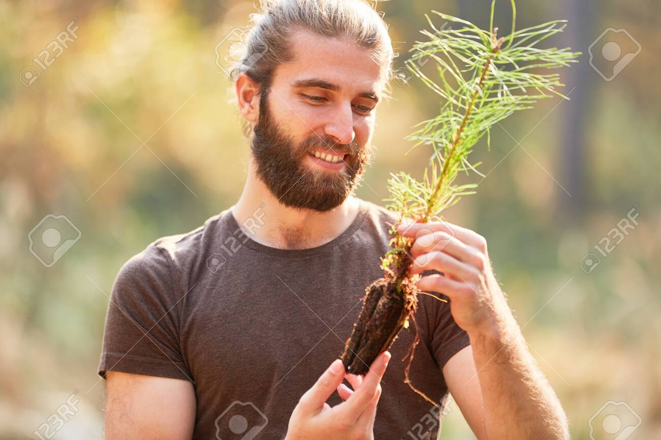 Young ranger looks forward to planting pine seedling during reforestation - 128302343