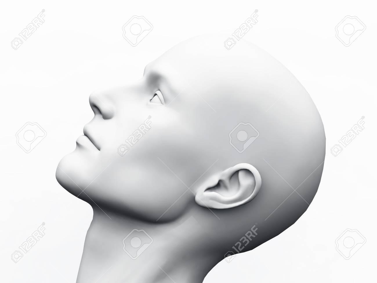 White Male Head Stock Photo - 13803167