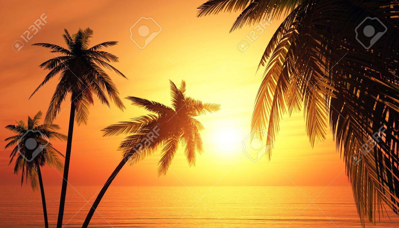 The dream island at sunset Stock Photo - 14621070