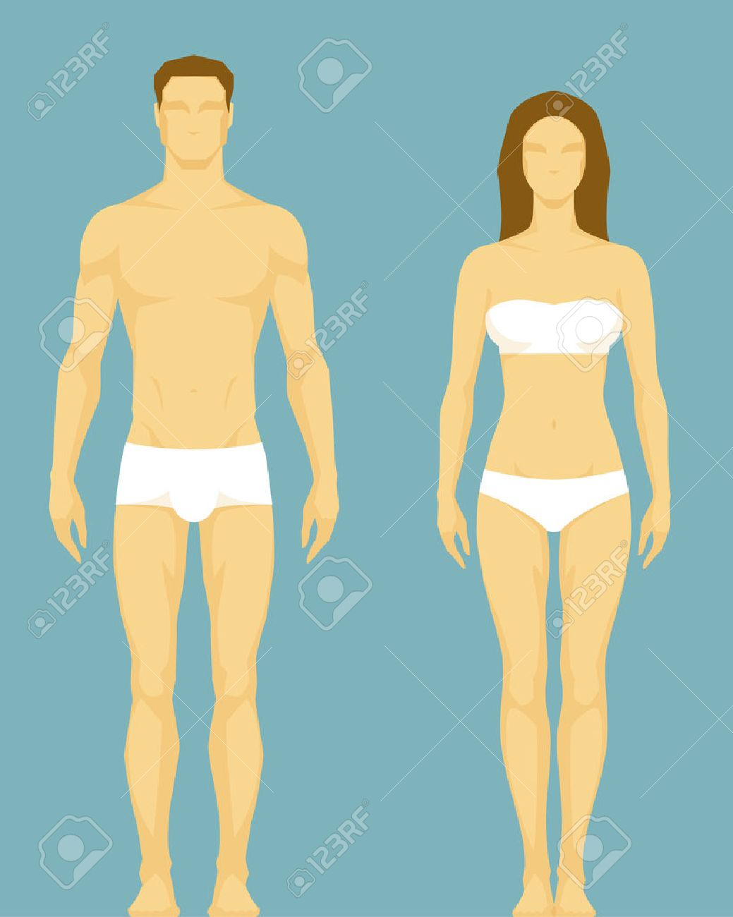 Ilustración Estilizada De Un Tipo De Cuerpo Sano Del Hombre Y La ...