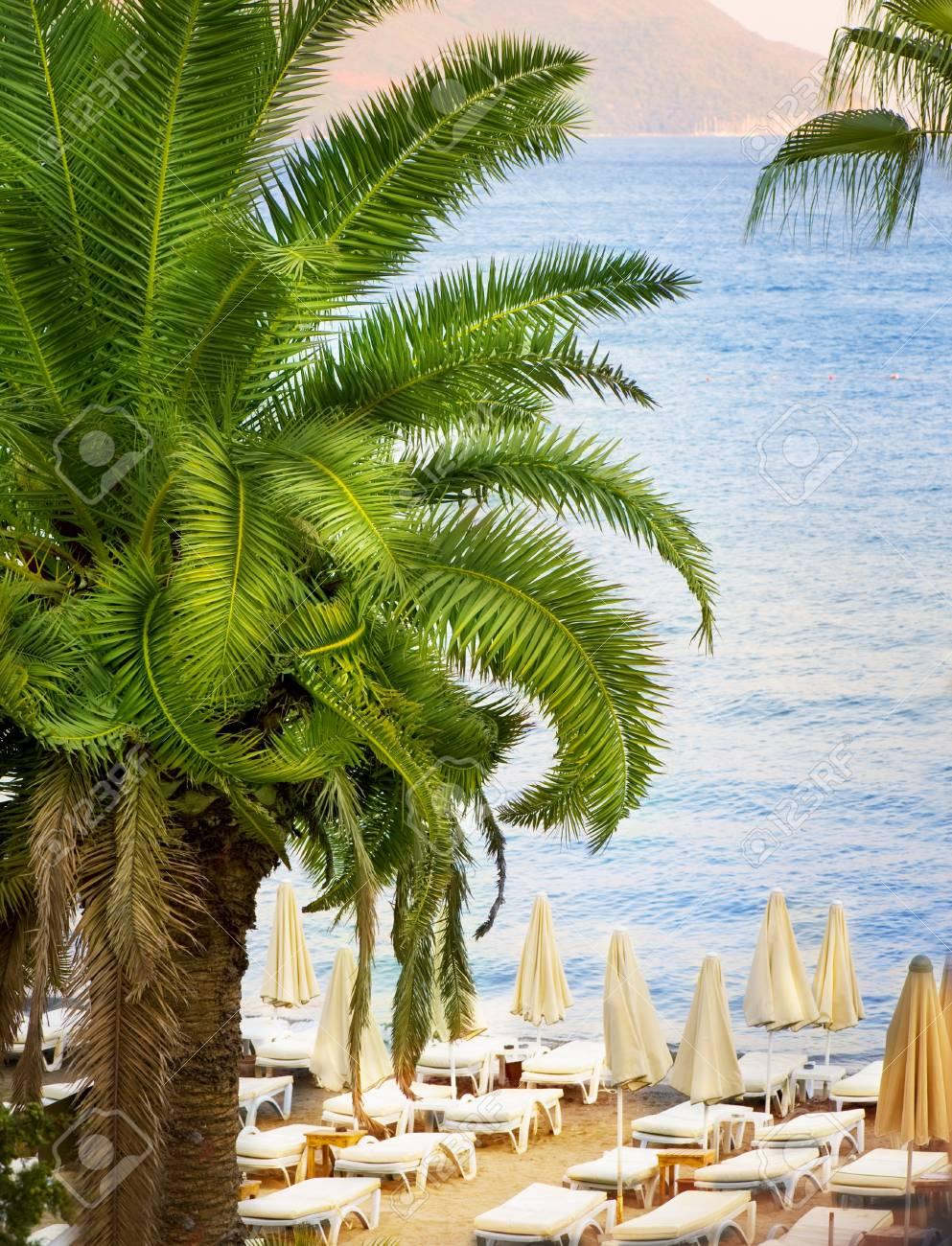 Tropical Resort Stock Photo - 10689023