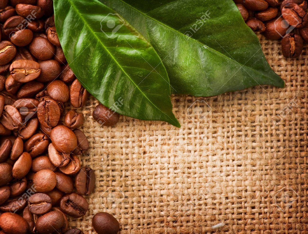 Coffee Beans Desktop Background coffee bean ~ uballs