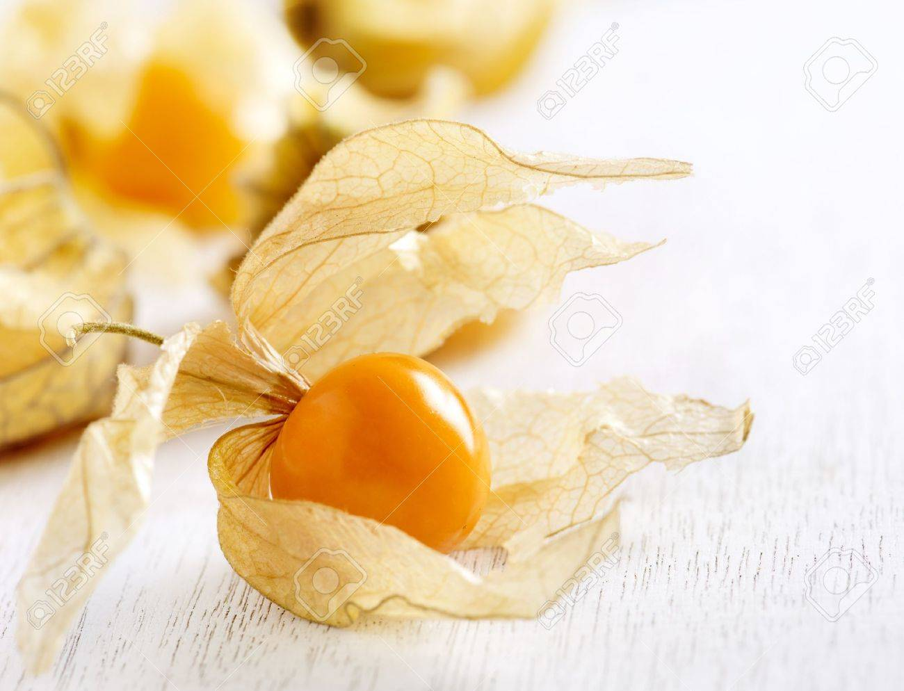 Physalis fruit Stock Photo - 18696906
