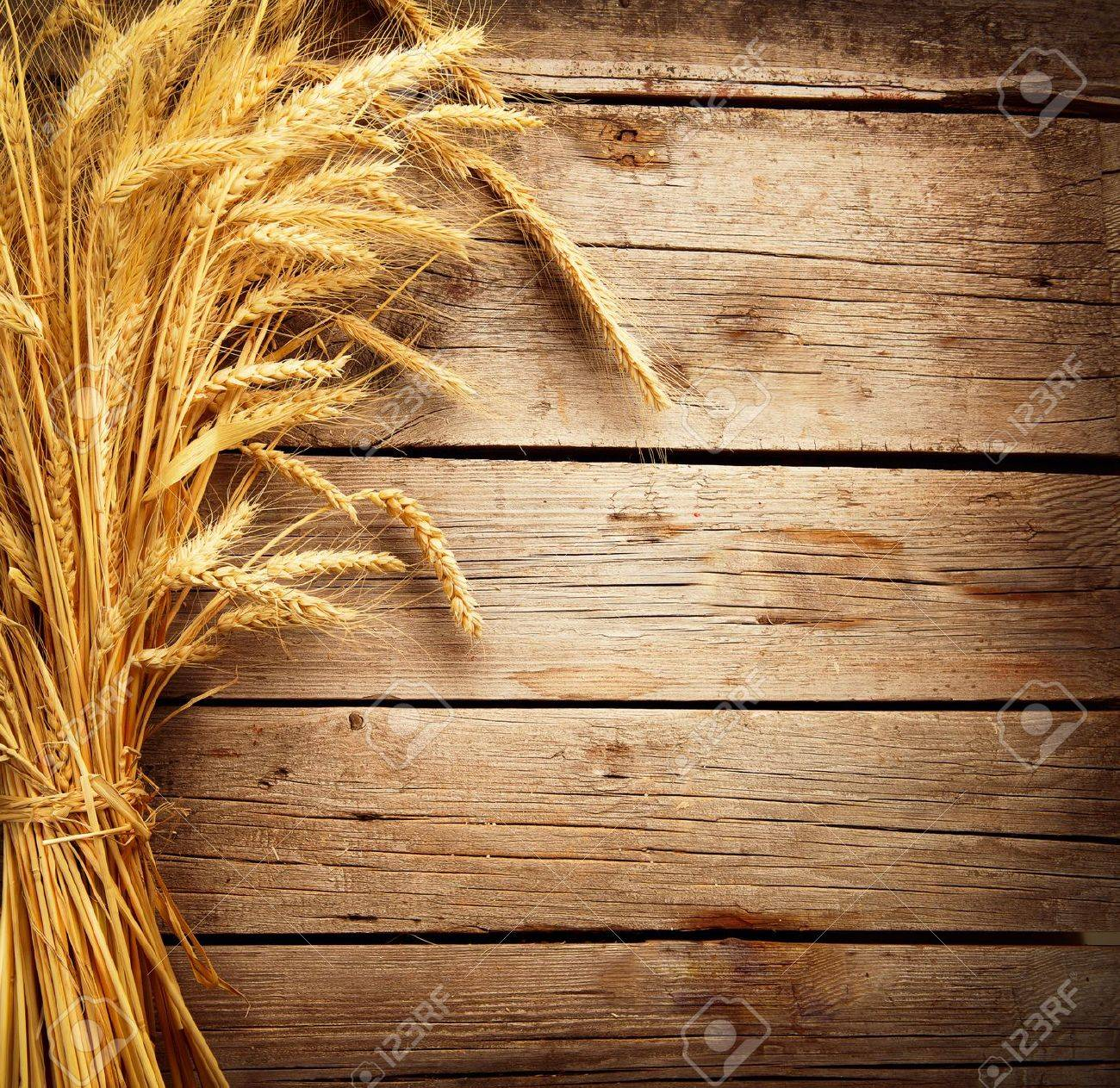 Wheat Ears on the Wooden Table  Harvest concept Stock Photo - 20934481