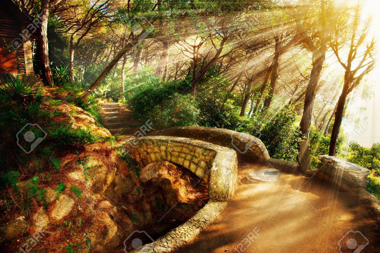 More similar stock images of 3d landscape with fall tree - Fantasy Landscape Mystical Park Old Trees And Ancient Stone Bridge Pathway Stock Photo