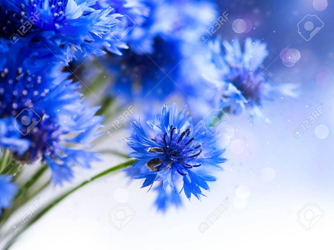 Cornflowers Wild Blue Flowers Blooming Border Art Design Stock Photo ...
