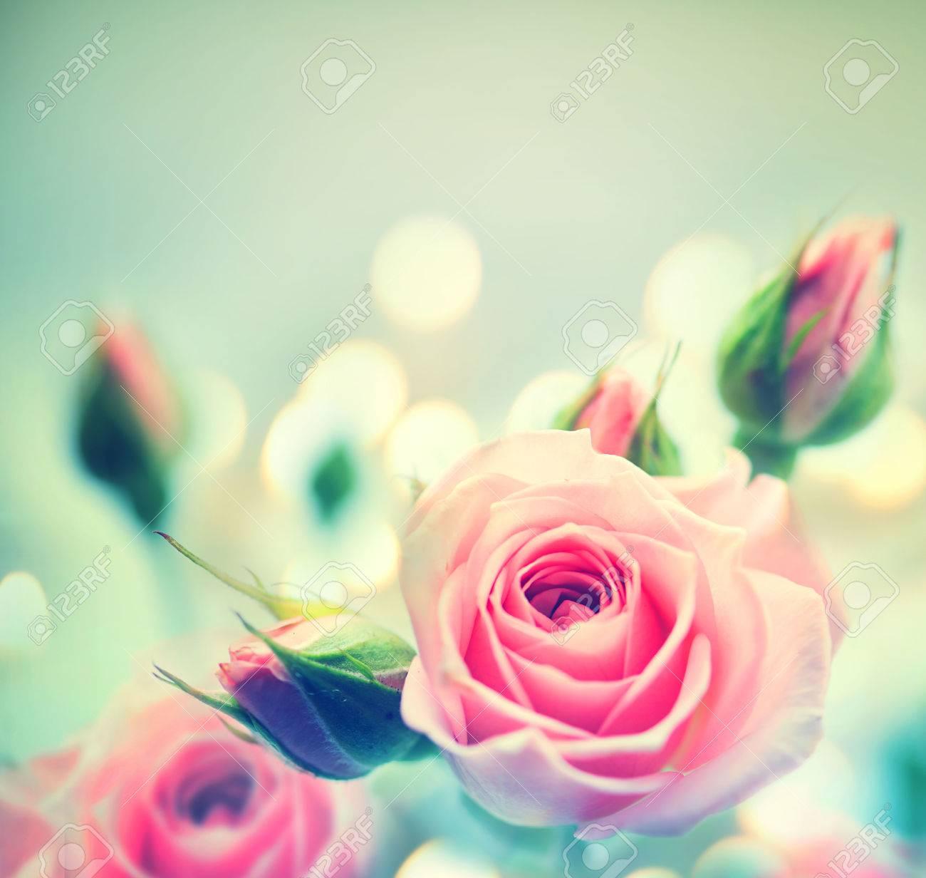 Rosas Rosadas Hermosas Diseño De La Tarjeta De Estilo Vintage Fotos