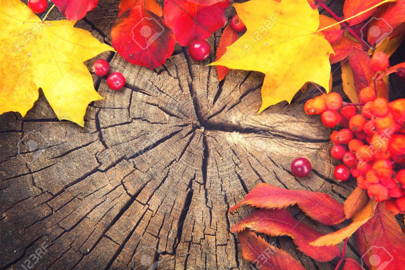 Herbst Hintergrund Mit Bunten Blatter Uber Holz Lizenzfreie Fotos