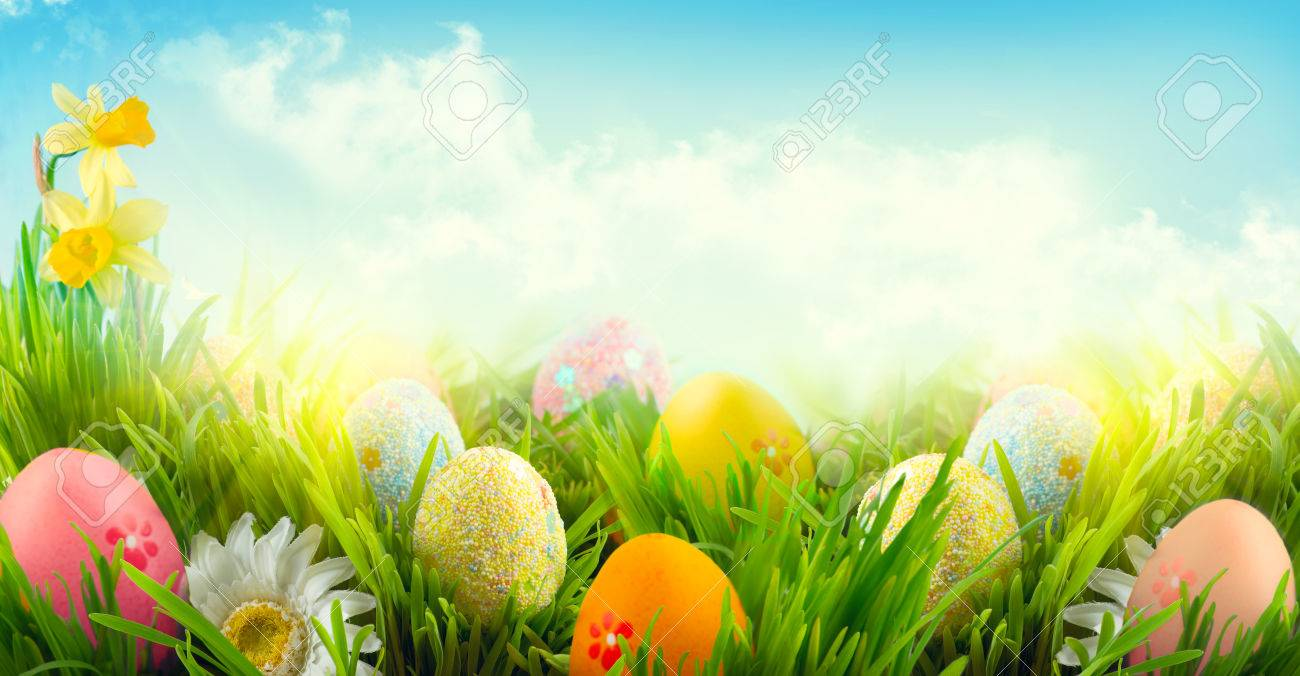 Easter nature spring scene background beautiful colorful eggs easter nature spring scene background beautiful colorful eggs in spring grass meadow stock photo voltagebd Images