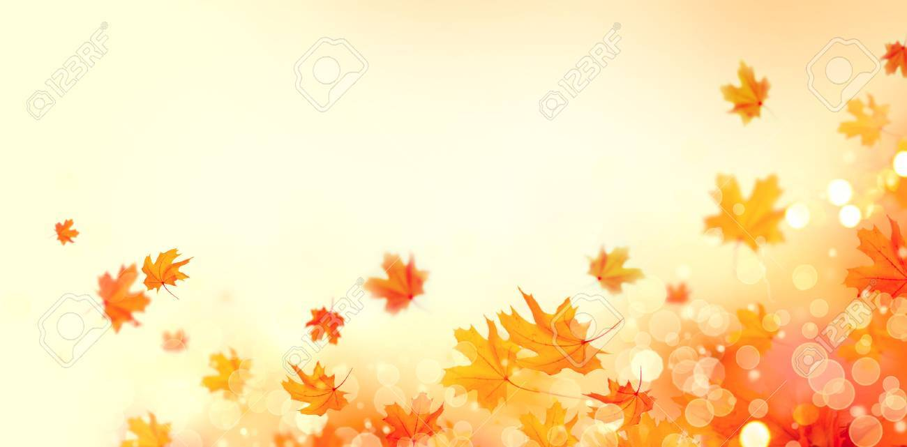 Autumn background. Fall abstract background with colorful leaves and sun flares - 86896679
