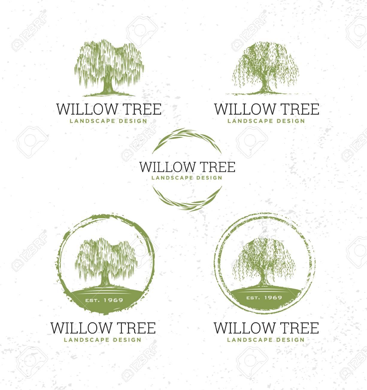 Willow Tree Landscape Design Creative Vector Nature Friendly