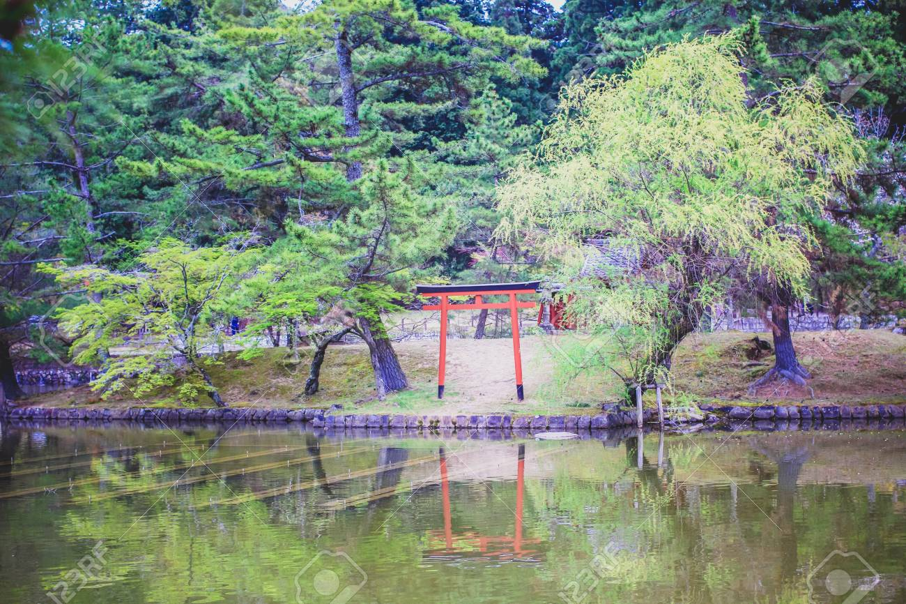 Beautiful And Peaceful Japanese Water Garden With A Red Torii Stock Photo    28117924