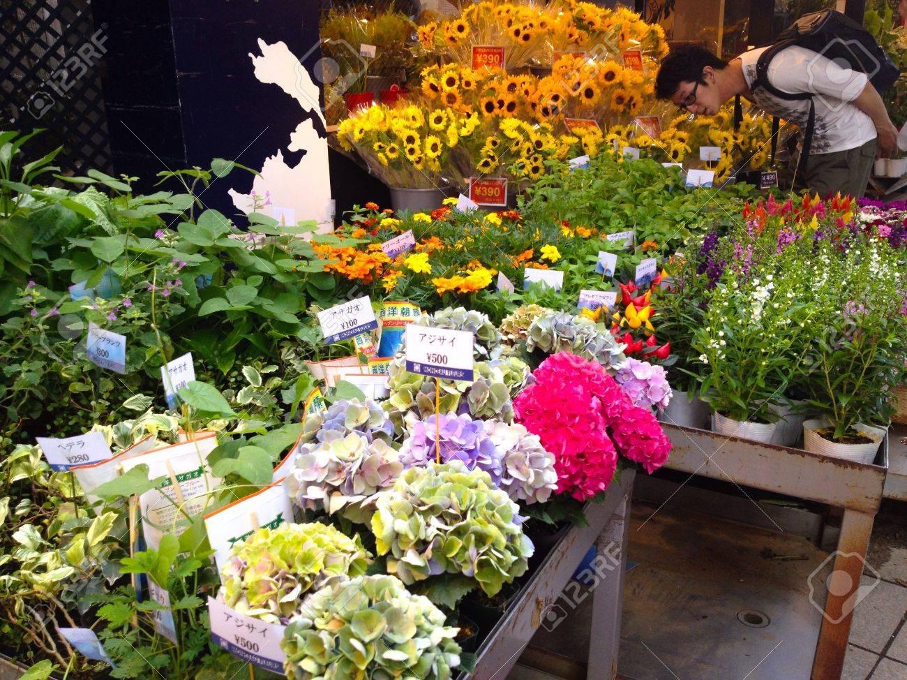 Beautiful flower shop in jiyugaoka tokyo japan stock photo beautiful flower shop in jiyugaoka tokyo japan stock photo 29359661 izmirmasajfo Gallery