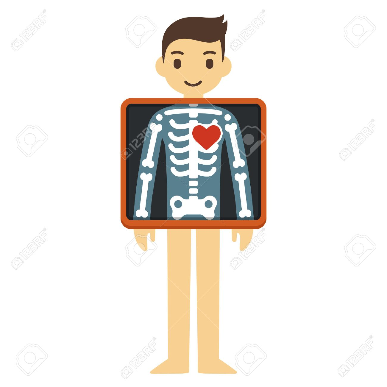 Cute Cartoon Adult Man With X Ray Screen Showing His Skeleton Royalty Free Cliparts Vectors And Stock Illustration Image 43127820