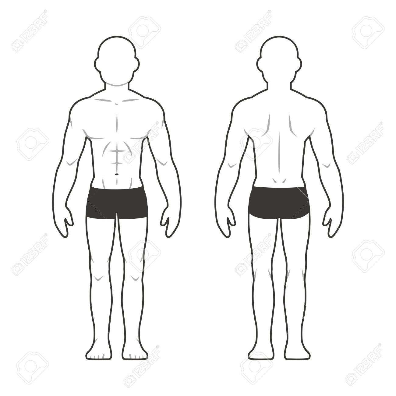 Athletic Male Body Chart. Muscular Man Silhouette From Front ...