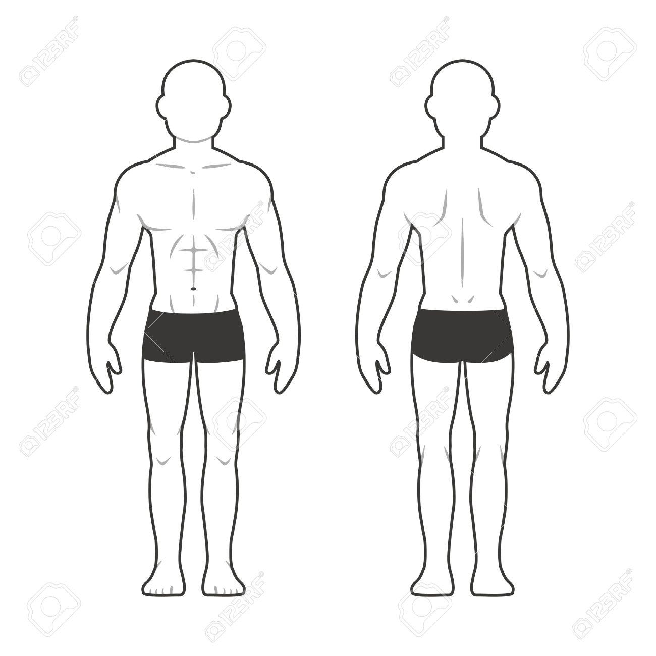 Athletisch Männlichen Körper-Chart. Muskulöser Mann Silhouette Von ...