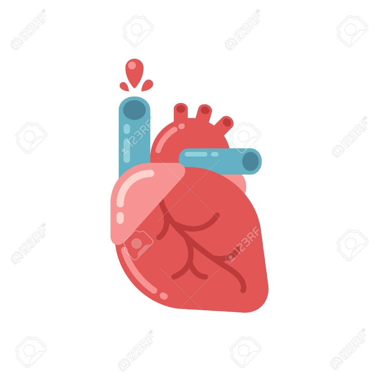 Stylized Human Heart Anatomy Icon. Modern Flat Cartoon Style ...