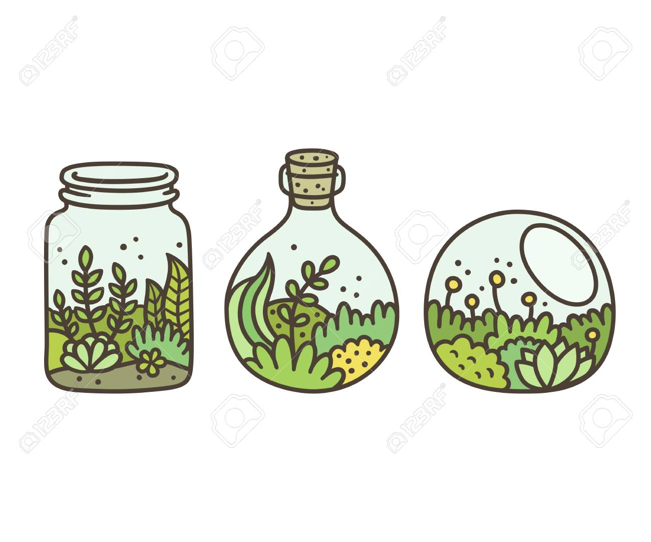 Plants In Terrariums Set Moss Succulents And Flowers In Glass Royalty Free Cliparts Vectors And Stock Illustration Image 75617432