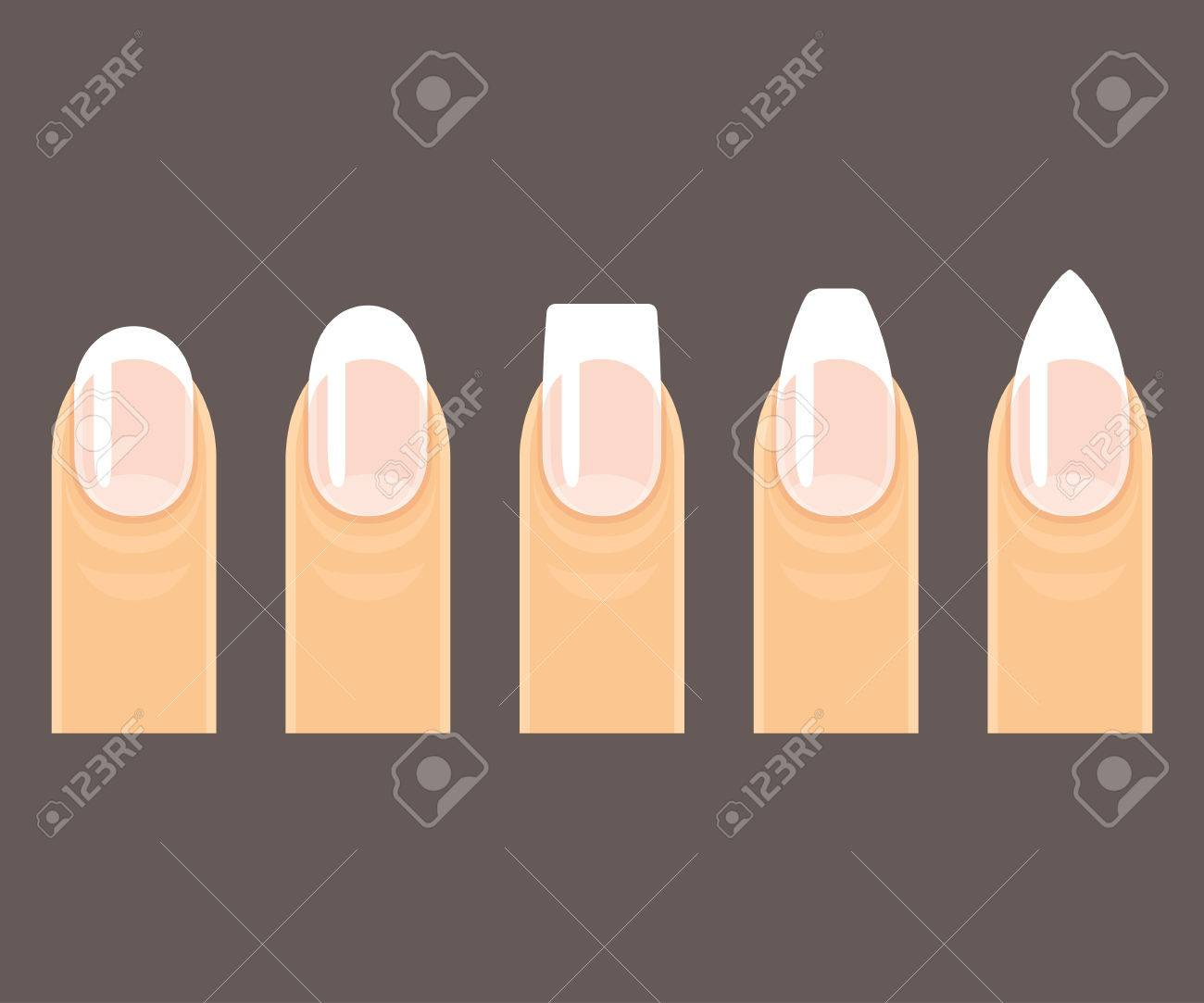 Professional Manicure Nail Shapes Set. Round, Square And Pointy ...