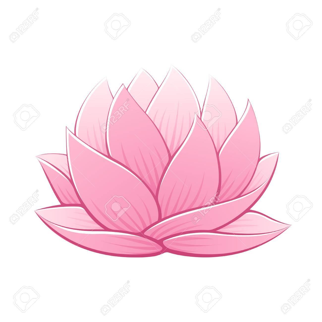 Pink Lotus Flower Vector Illustration Beautiful Realistic Waterlily