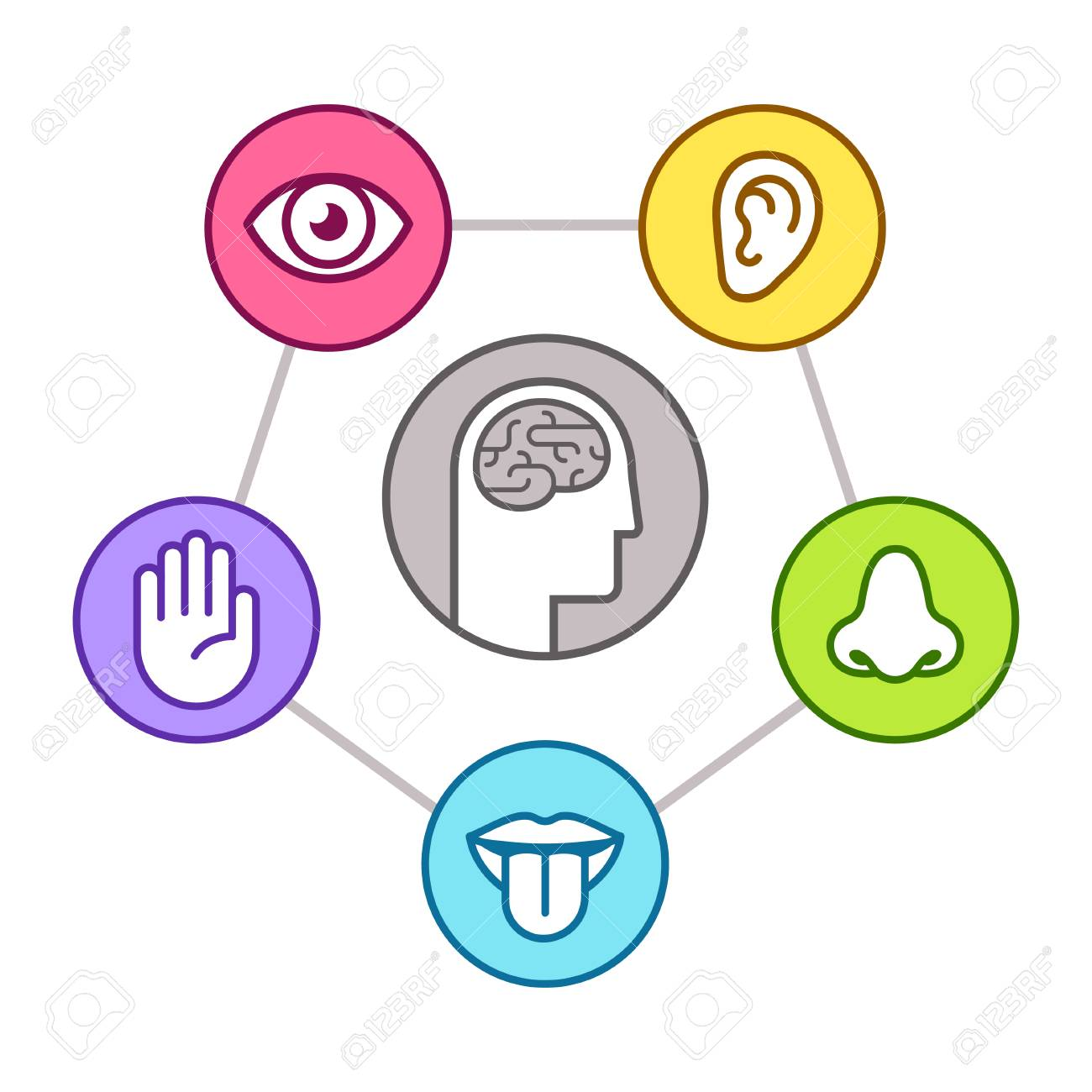 Five Sense Organs Clipart - Awesome Graphic Library •