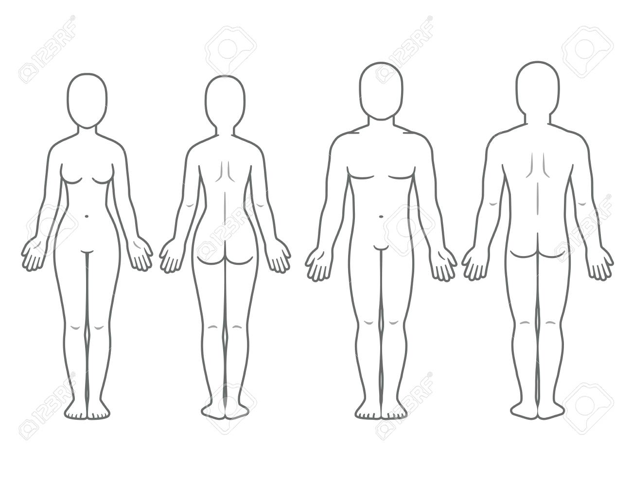 Male and female body front and back view. Blank human body template for medical infographic. Isolated vector illustration. - 95218807