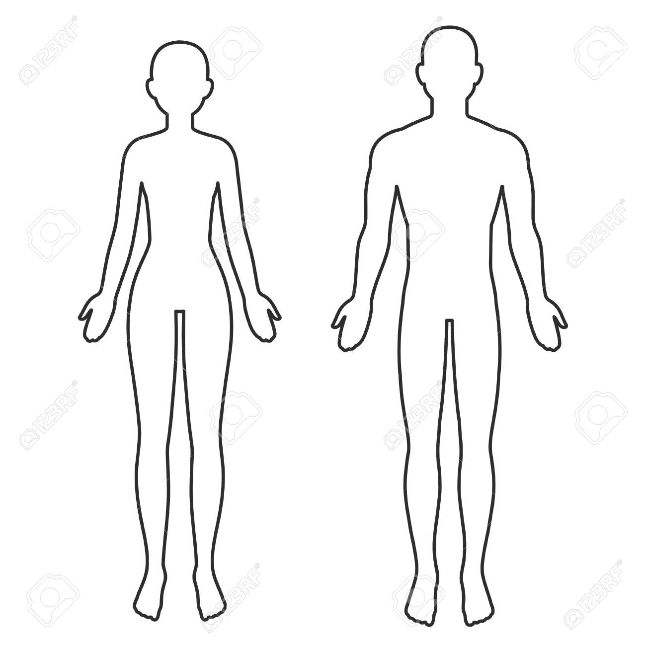 Male and female body silhouette outline. Blank anatomy template for medical infographics. Isolated vector clip art illustration. - 124951293