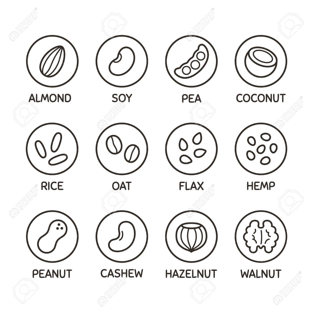 Plant based milk alternative icon set. Nut and seed milk, beans and grains. Labels for non-dairy beverages, vector symbols. - 144219759