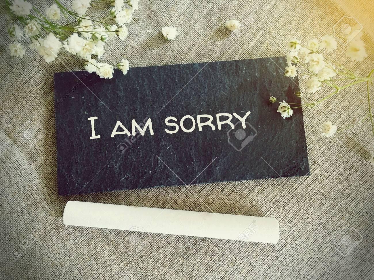 Es mir leid bilder tut sorry 32 Bilder