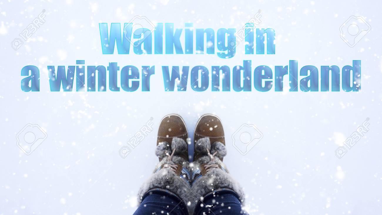 Caminar En Una Frase Del País De Las Maravillas Del Invierno