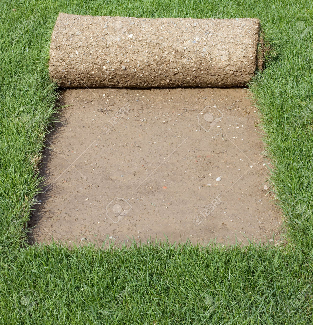 Grass Carpet Rolls Peeled from Sod Standard-Bild - 13926557
