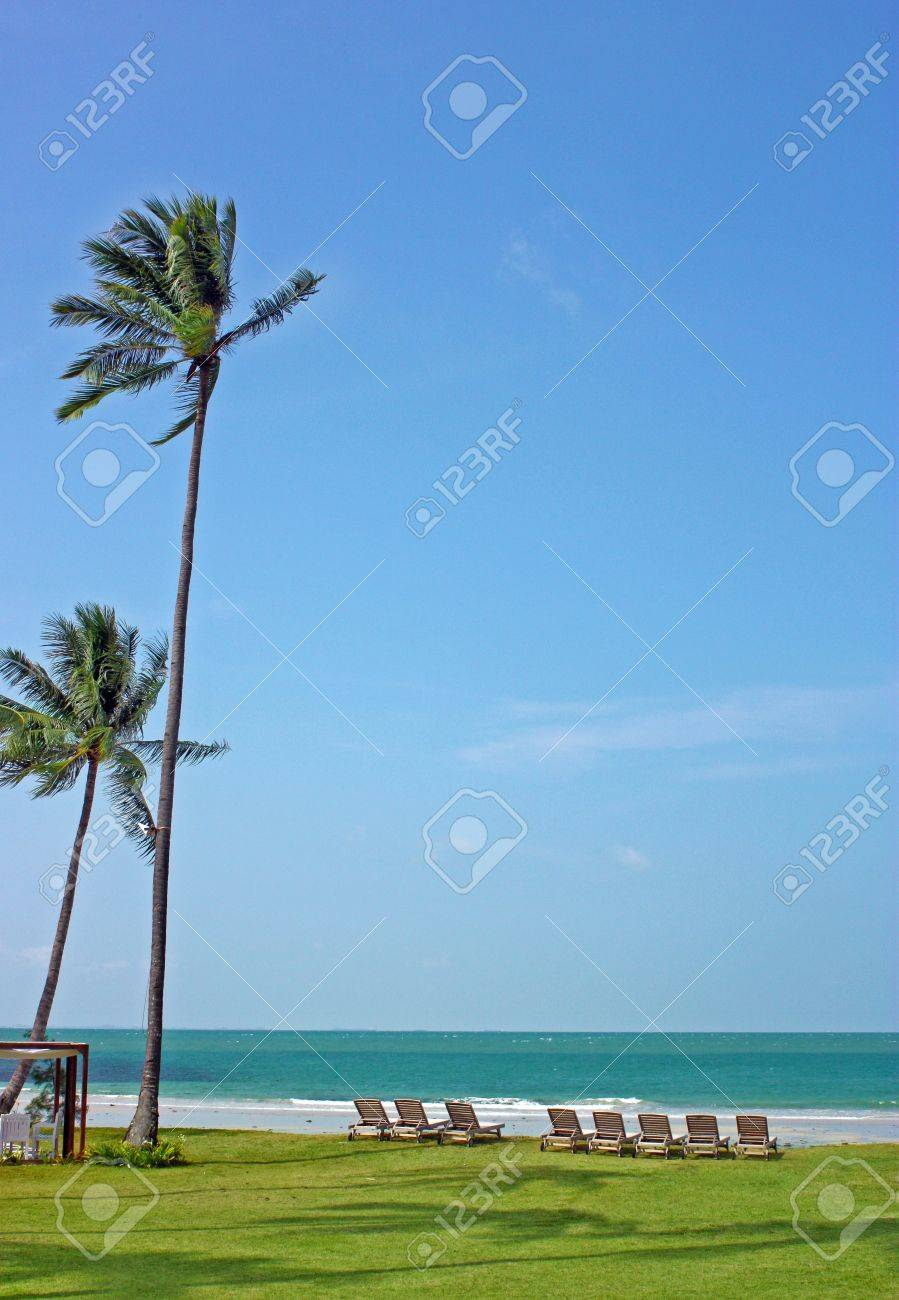 beach, coconut, tree, trees, wind, breeze, blowing, sway, swaying, windy, deck, chairs, pool, recliners, shore, sea, ocean, sky, blue, green, grass, nobody, deserted, island, tropical, day, daytime, outdoors, surf, waves, horizon, clear, holicay, vacation Stock Photo - 8850538