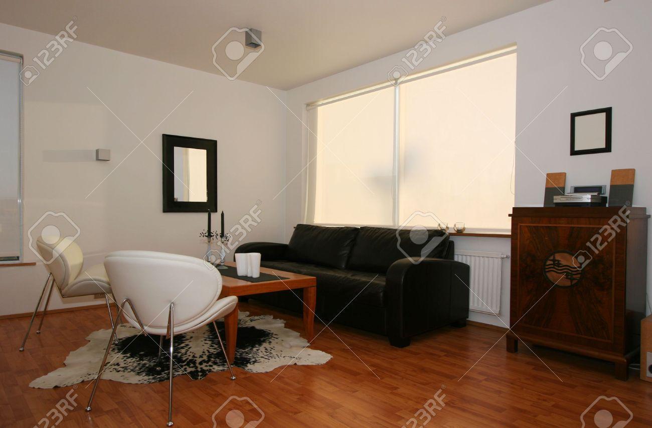 Trendy salon, le plus souvent dans un décor noir et blanc avec un plancher  de bois franc, très moderne, avec une