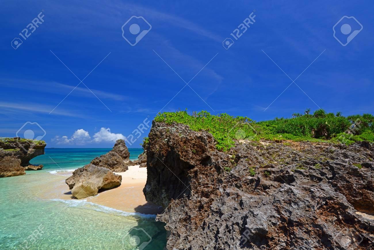 Beautiful subtropical Okinawa Stock Photo - 15243040