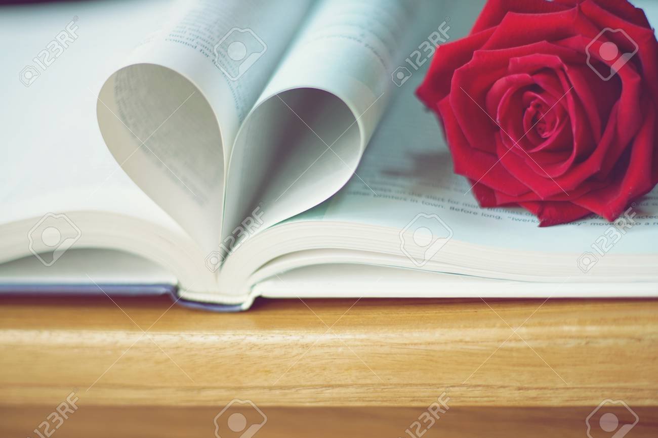 Lovely red color rose on book roll into heart shape, soft color