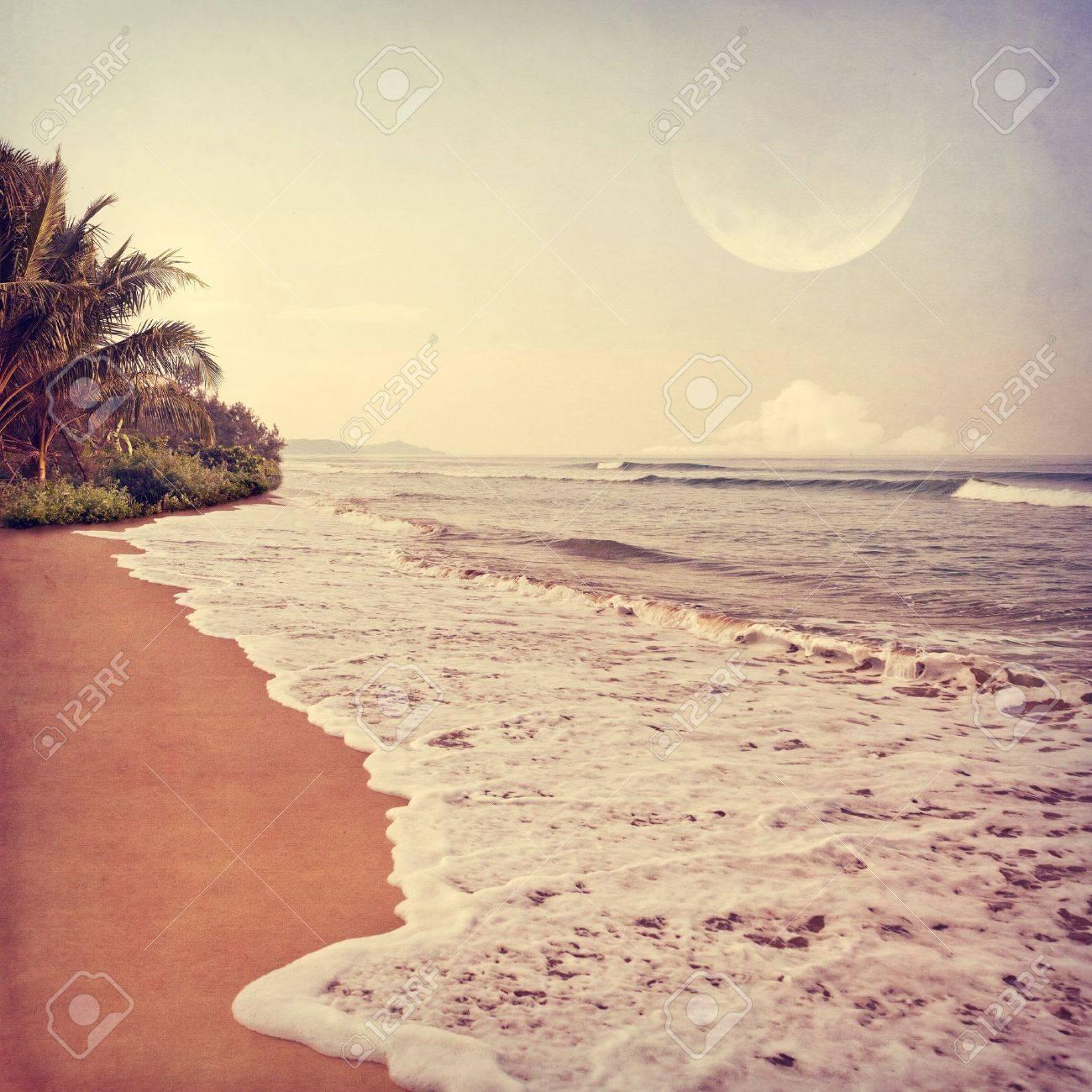 Vintage beach Nude Photos 85