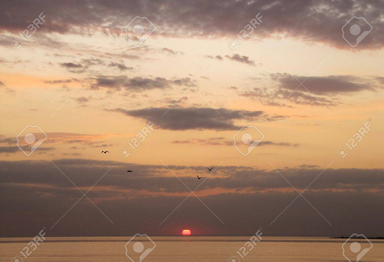 Sunset over the sea in the cloudy sky and flying birds Stock Photo - 15082583