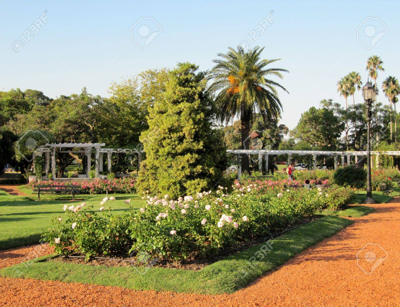 Schone Garten Mit Rosen An Einem Sonnigen Tag Landschaft Lizenzfreie