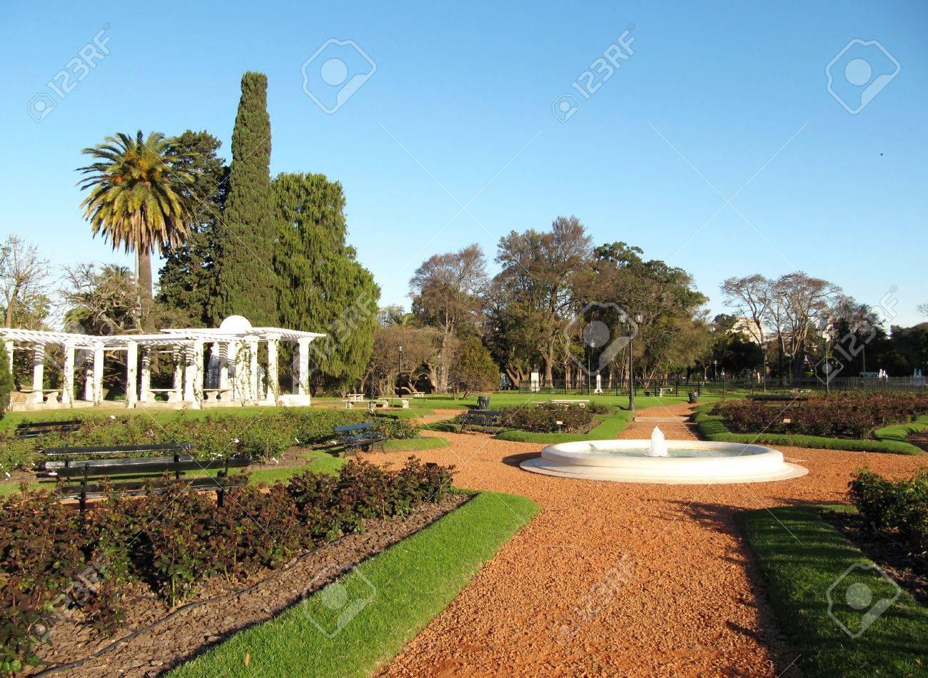 Bellissimi giardini di rose nel paesaggio della città primavera foto