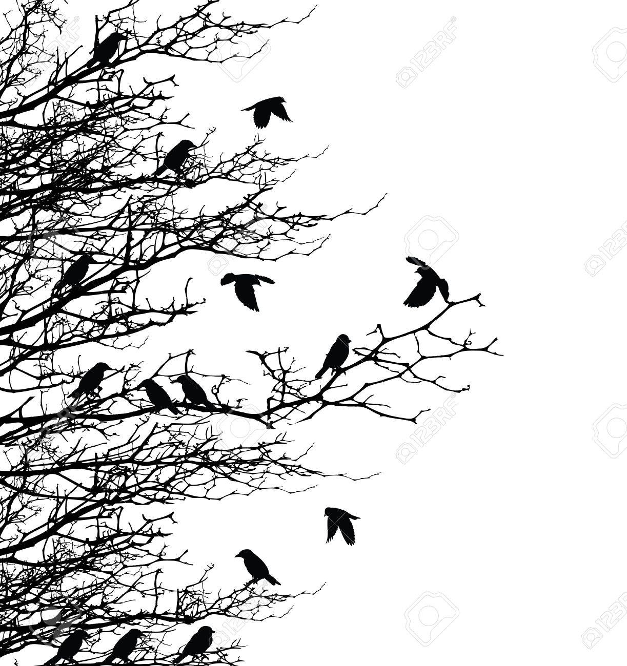 Flying Birds Silhouette Tree Tree Silhouette With Bird Fly