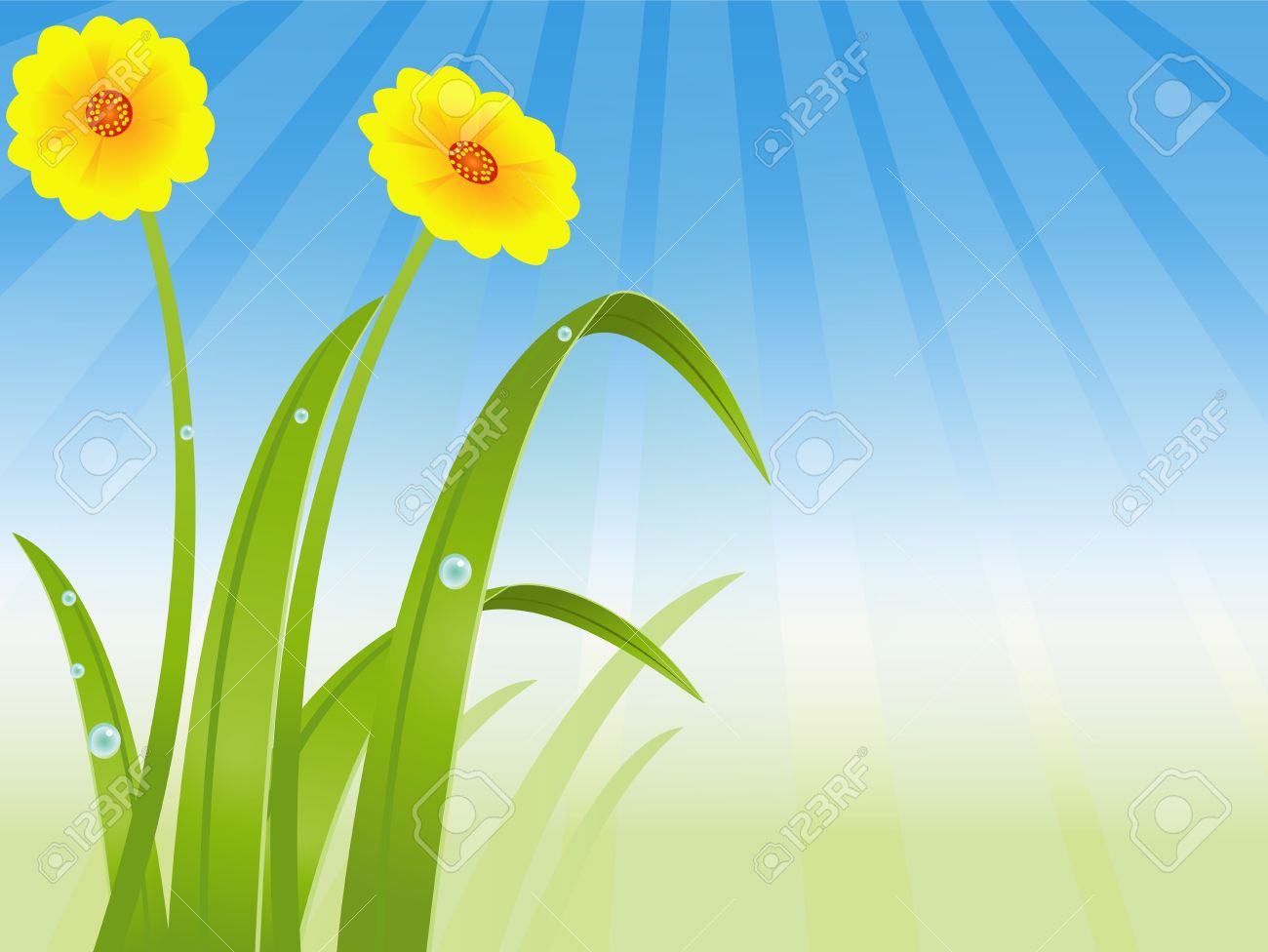 beautiful grass  and flowers background Stock Vector - 14474342